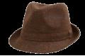 Gents Hats New